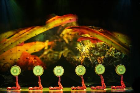 DISCOVER: Cirque du Soleil Ovo