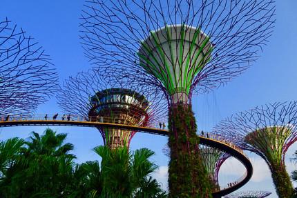 Singapour - La Fierté du Père!