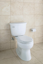 Kohler Cimarron ADA-Approved Comfort Height Toilet