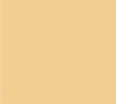 Paper Texture BG2.png
