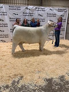 Addie Potts Grand Champion Steer Wichita