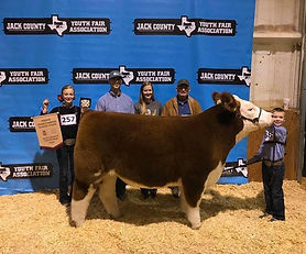Bryce Thorne Reserve Grand Champion Stee