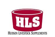 HLS Logo.png