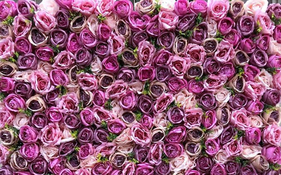 PurplePrincess.jpg