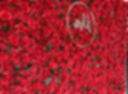 redflowerwall_edited.jpg