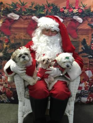 PetPALS_Pets_with_Santa1.jpg