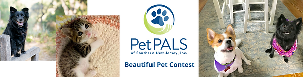 Beautiful Pet Contest.png