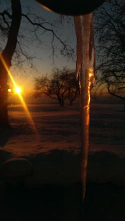 SunriseIcicle5.jpg