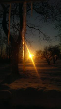 SunriseIcicle.jpg