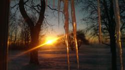 SunriseIcicle7.jpg