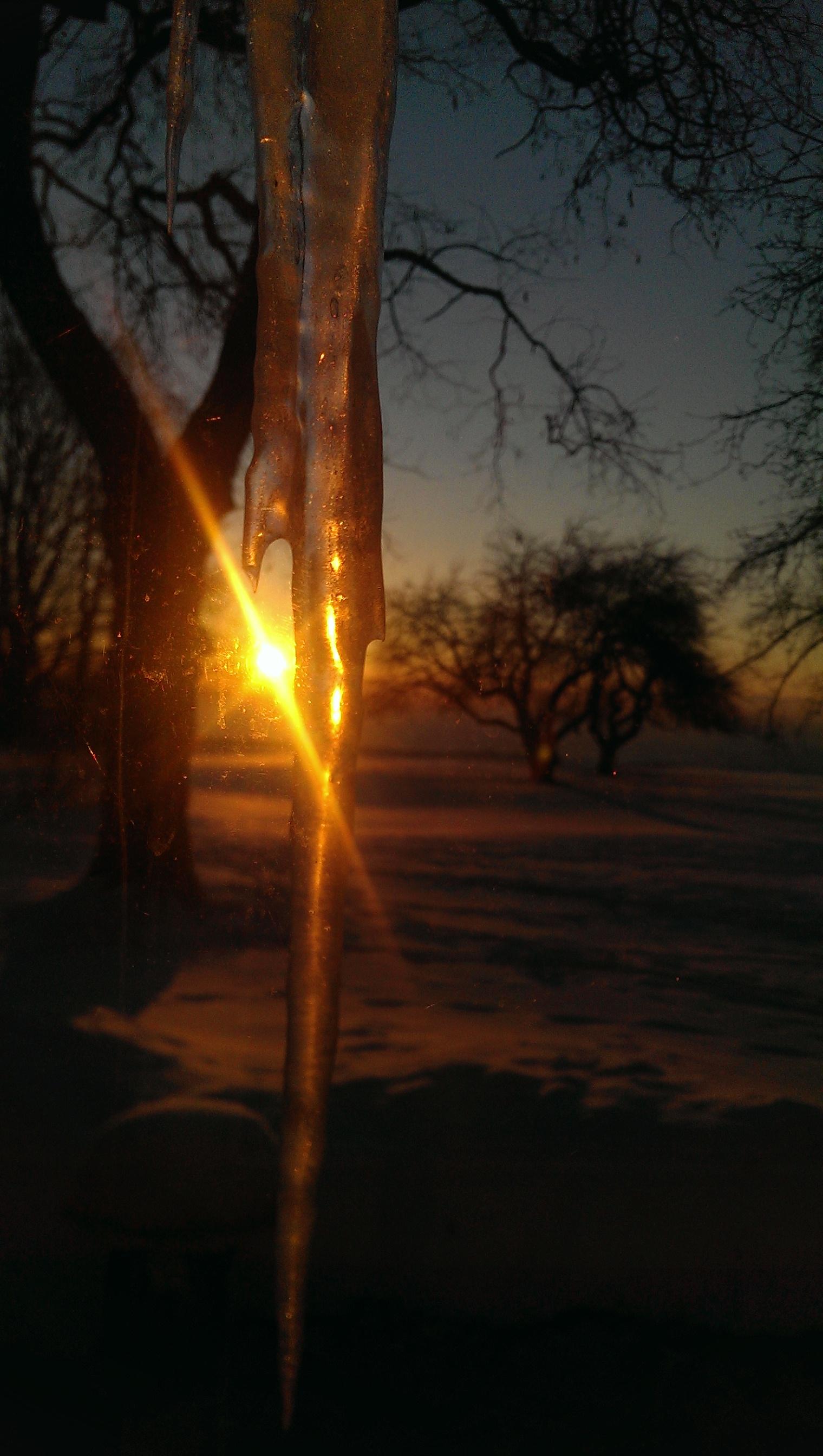 SunriseIcicle4.jpg