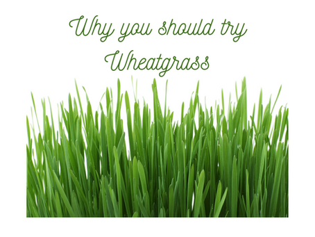 How to eat Wheatgrass and why you should