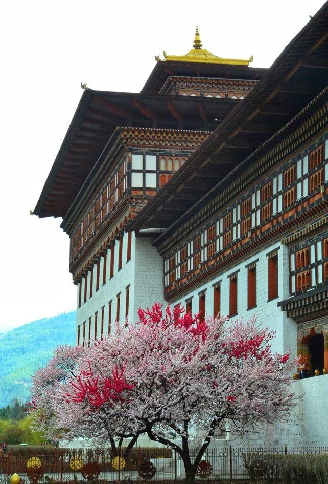 札西秋宗Tashichho Dzong