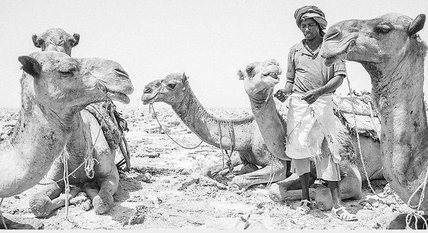 Tough Life 4 (Ethiopia)
