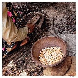 Préparation de noix de cajou