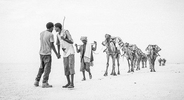 Caravan 5 (Ethiopia)