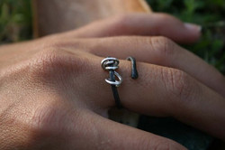 Silver Nature Ring