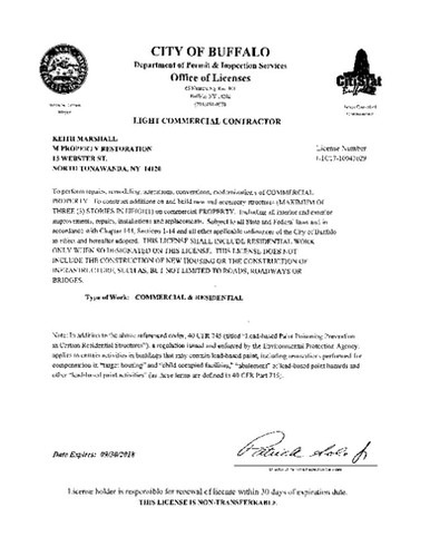 buffalo license pic.jpg