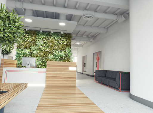 5 Ways in which a Green Wall will Improve your Office Interior Design
