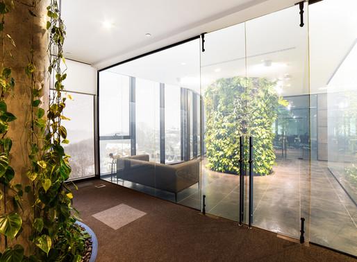Indoor Green Walls for Company Social Responsibility