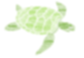 Word Turtle.png
