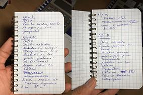 19-Copy-of-Diseaselog---Oswaldo-Nomura_s