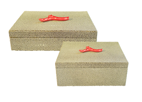 Coral on Shagreen Box