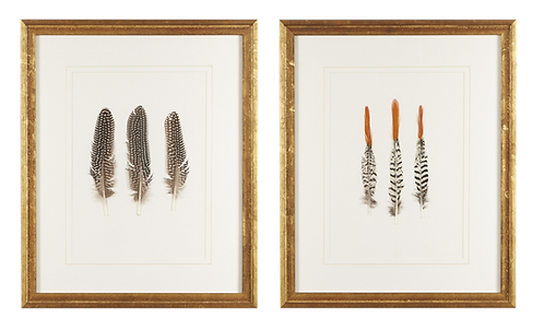 Pair of Triple Pheasant Feather