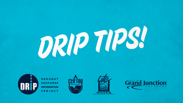 DRIP-Tip-Dual Irrigation Systems