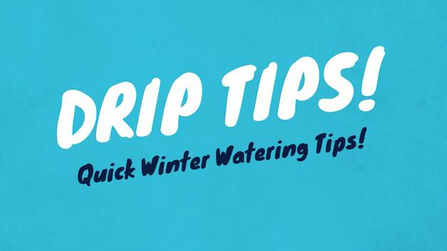 1118-FB-DRIP-Quick Winter Watering Tips.