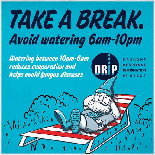 DRIP-Tip-Watering Time.jpg