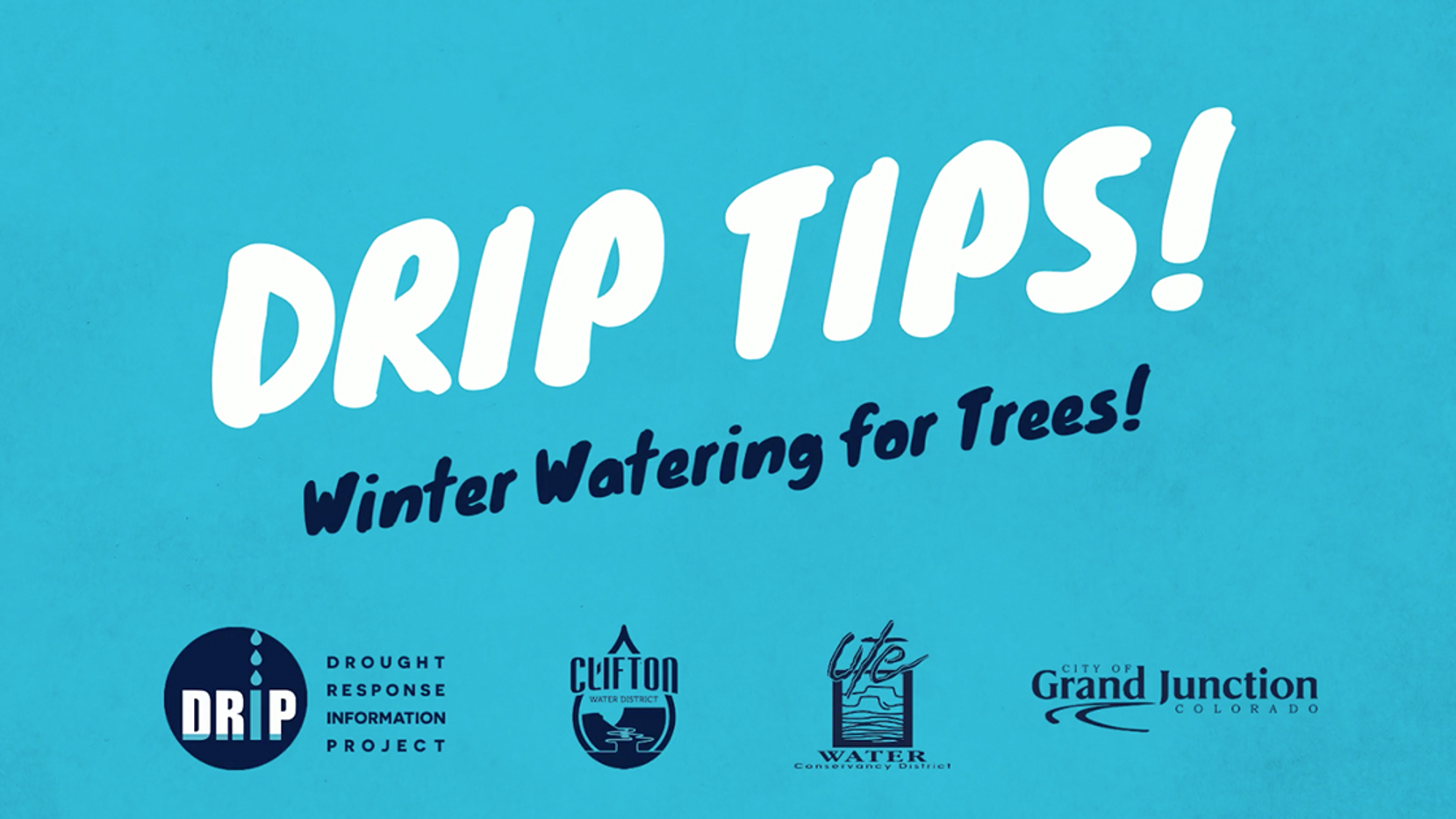 1208-FB-DRIP-Winter Watering For Trees.m