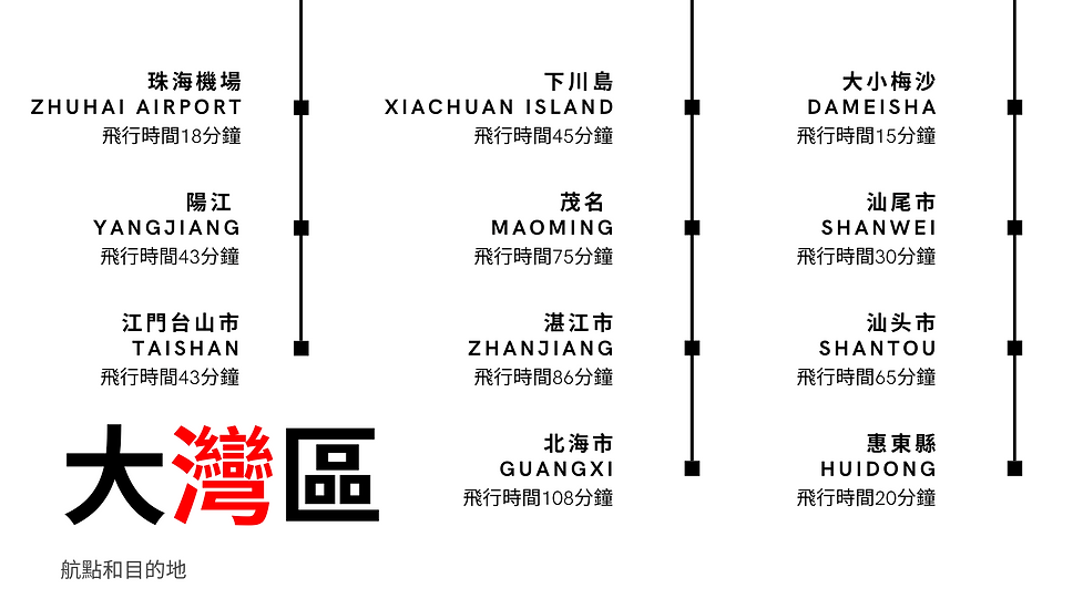 Future Roadmap.png