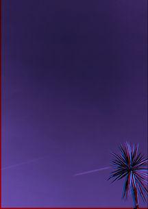 AZPC_03 WEB.jpeg