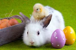 Wielkanoc 2.jpeg