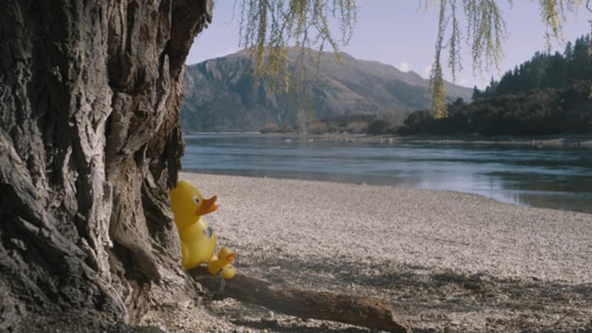 David Attenborough Presents Racing Duck