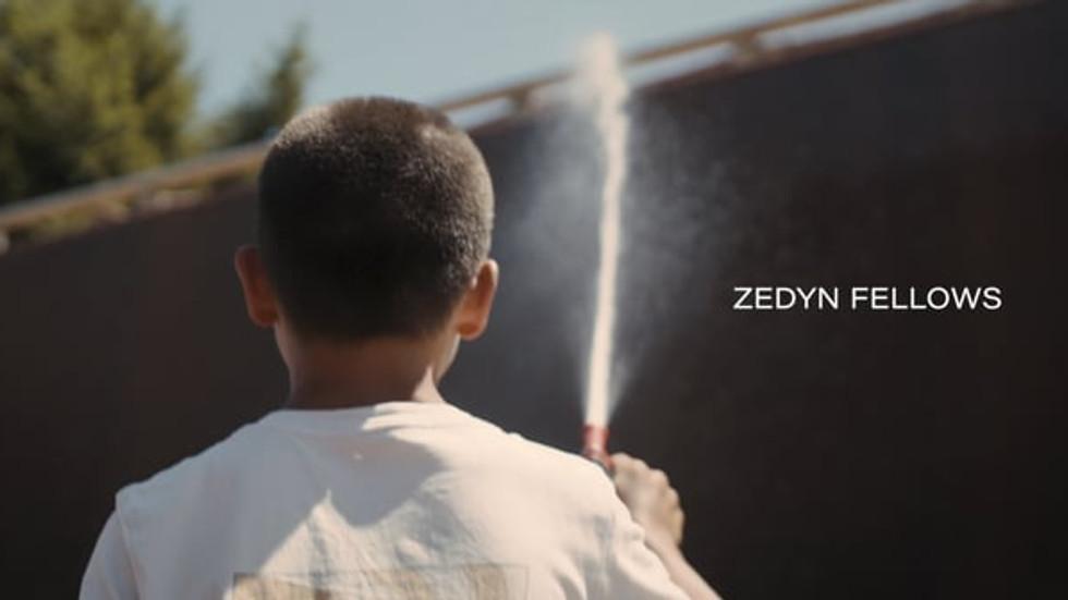 Zedyn Fellows | SoundSkate Vol.1 Vert