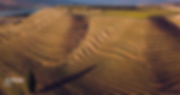 Screen Shot 2020-01-17 at 9.12.34 AM.png