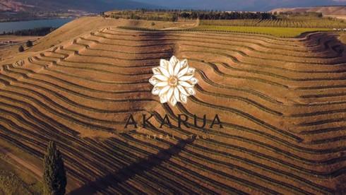 Akarua - 25 Steps