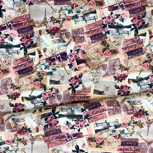 Jerseystoff, Baumwollstoff, Rosen-Paris Motive auf rosa Hintergrund