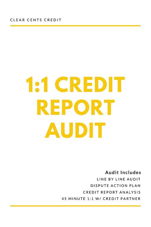 1:1 Credit Report Audit
