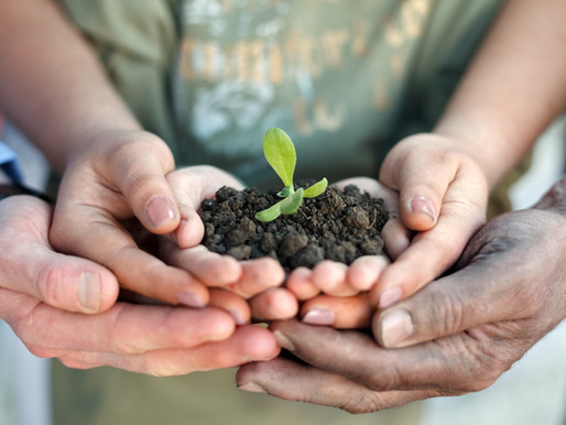 Join us for our Planting the Seed Luncheon
