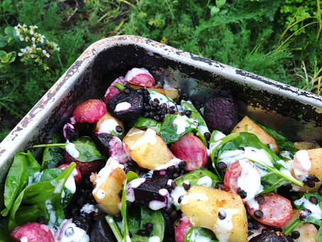 Radish, Beetroot, Lentil and Potato tray bake