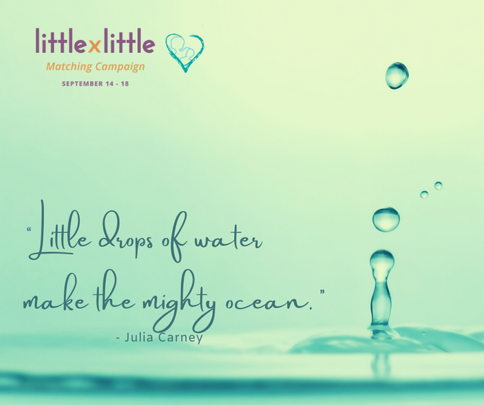 Little by Little campaign is just around the corner!