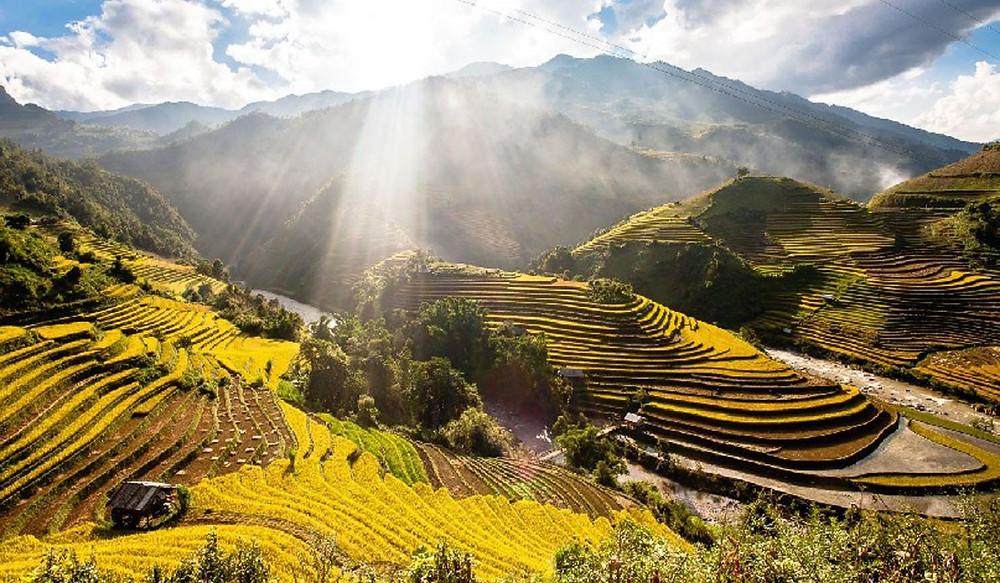 Ruộng bậc thang - Vẻ đẹp nông nghiệp của người Mông