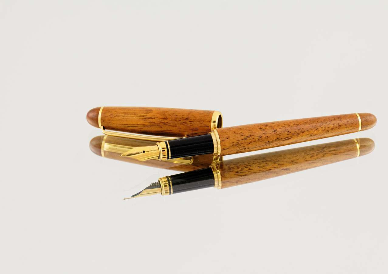 Canva - Brown and Black Fountain Pen.jpg