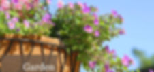Garden%201_edited.jpg
