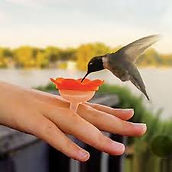 hummer ring.jpg