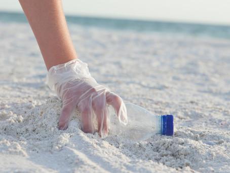 Pulizia spiaggia di Lavinio