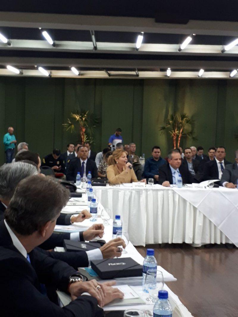 Encontro teve a participação de dirigentes de Detrans de todo o Brasil. (Foto: Divulgação)
